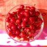 Sucul de cirese pentru durerile musculare